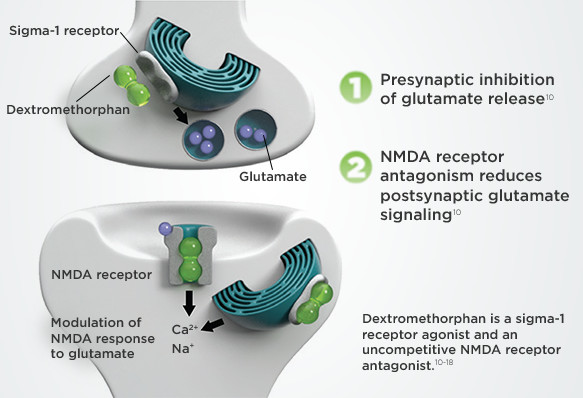 Components and Pharmacology | NUEDEXTA® | HCP